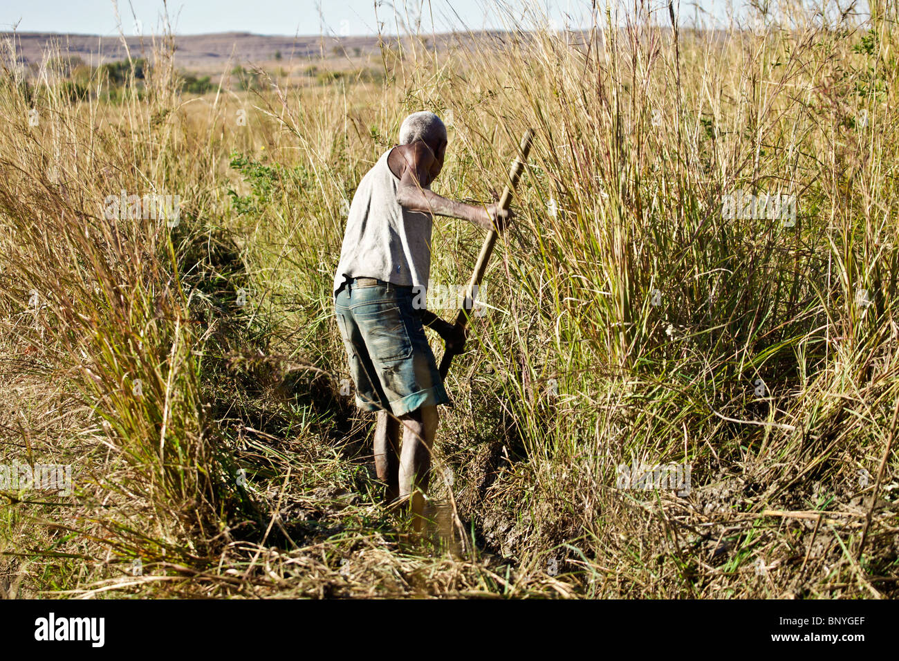 Man clearing an irrigation channel leading to rice paddies in Isalo National park in south-western Madagascar - Stock Image