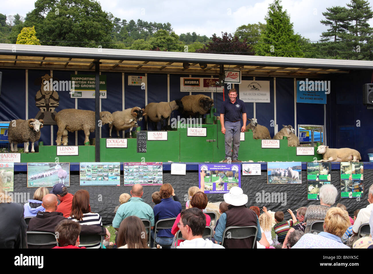 Various breeds of sheep at a farming awareness demonstration at the Bakewell Show, Bakewell, Derbyshire, England, - Stock Image