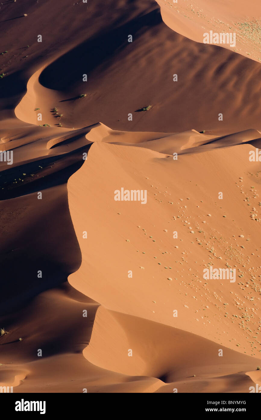 Crest of a red sand dune at Sossusvlei in Naukluft Park Central Namib desert Namibia - Stock Image