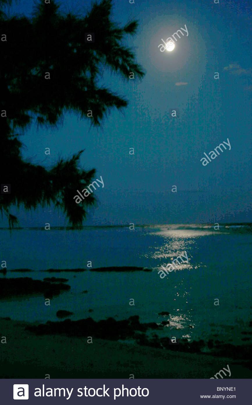 moon full lunar season nocturnal Mauritius - Stock Image