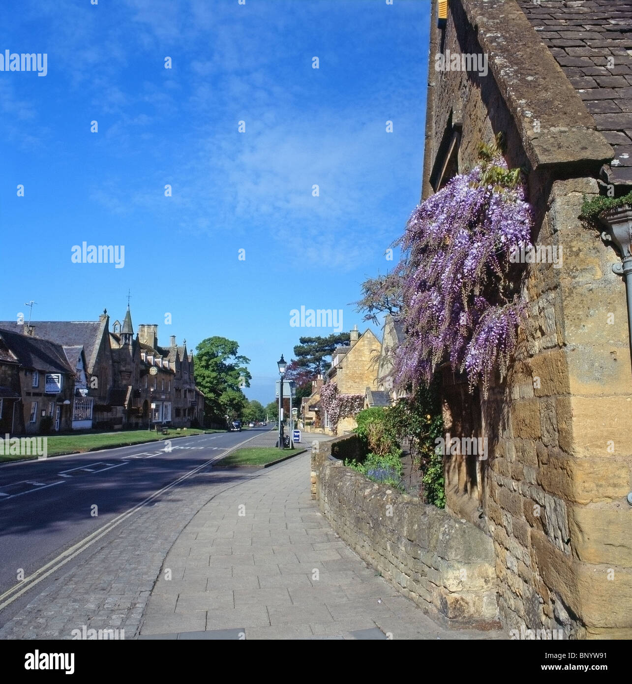 Wisteria In Bloom Stock Photos & Wisteria In Bloom Stock Images - Alamy