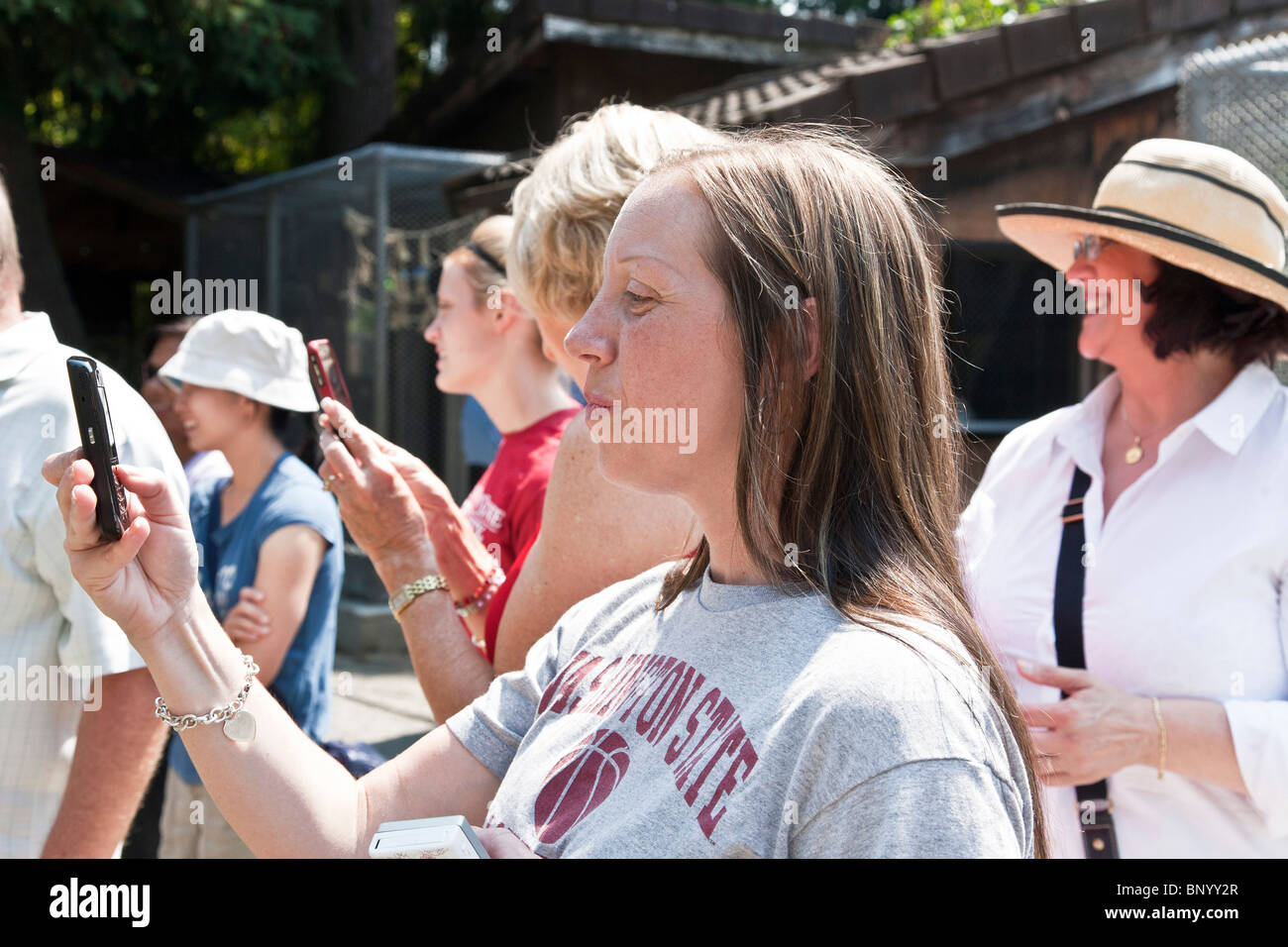spectators smile with delight as they capture performance of parrot with keeper at Couger Mountain Zoological Park - Stock Image