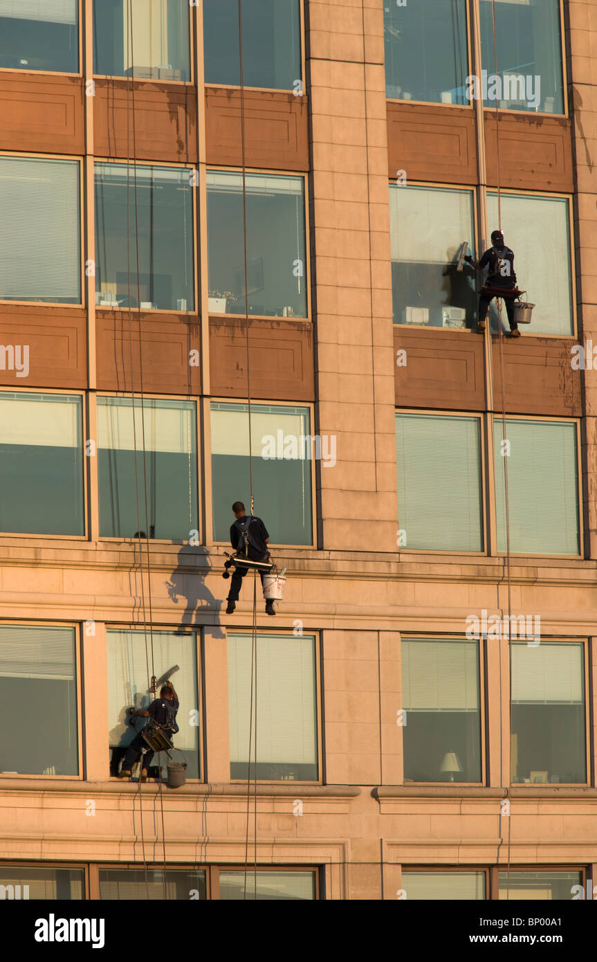 Window washers repelling down a building in Boston MA. - Stock Image