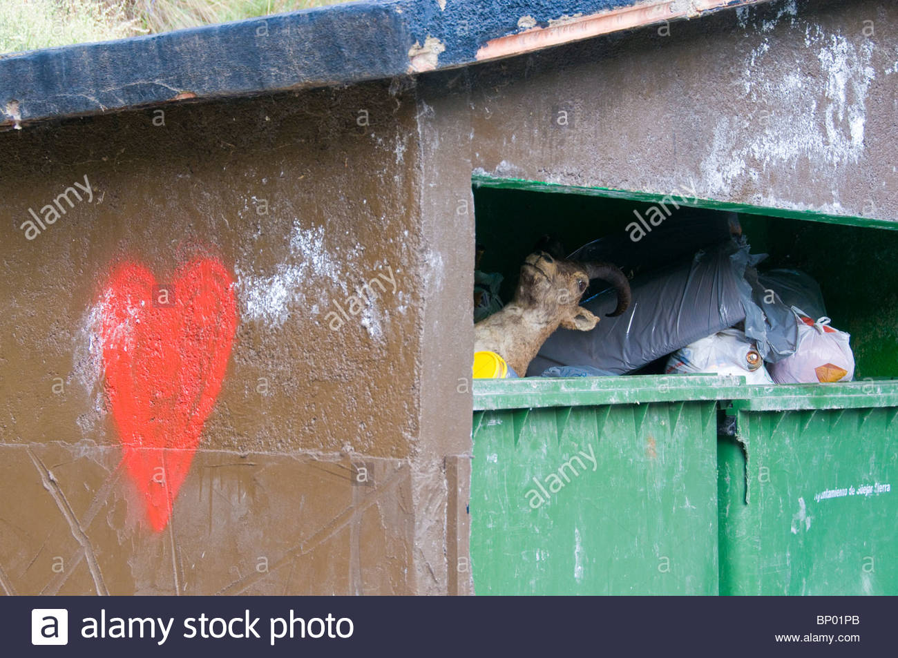 A stuffed wild goat dumped in a rubbish container - Stock Image