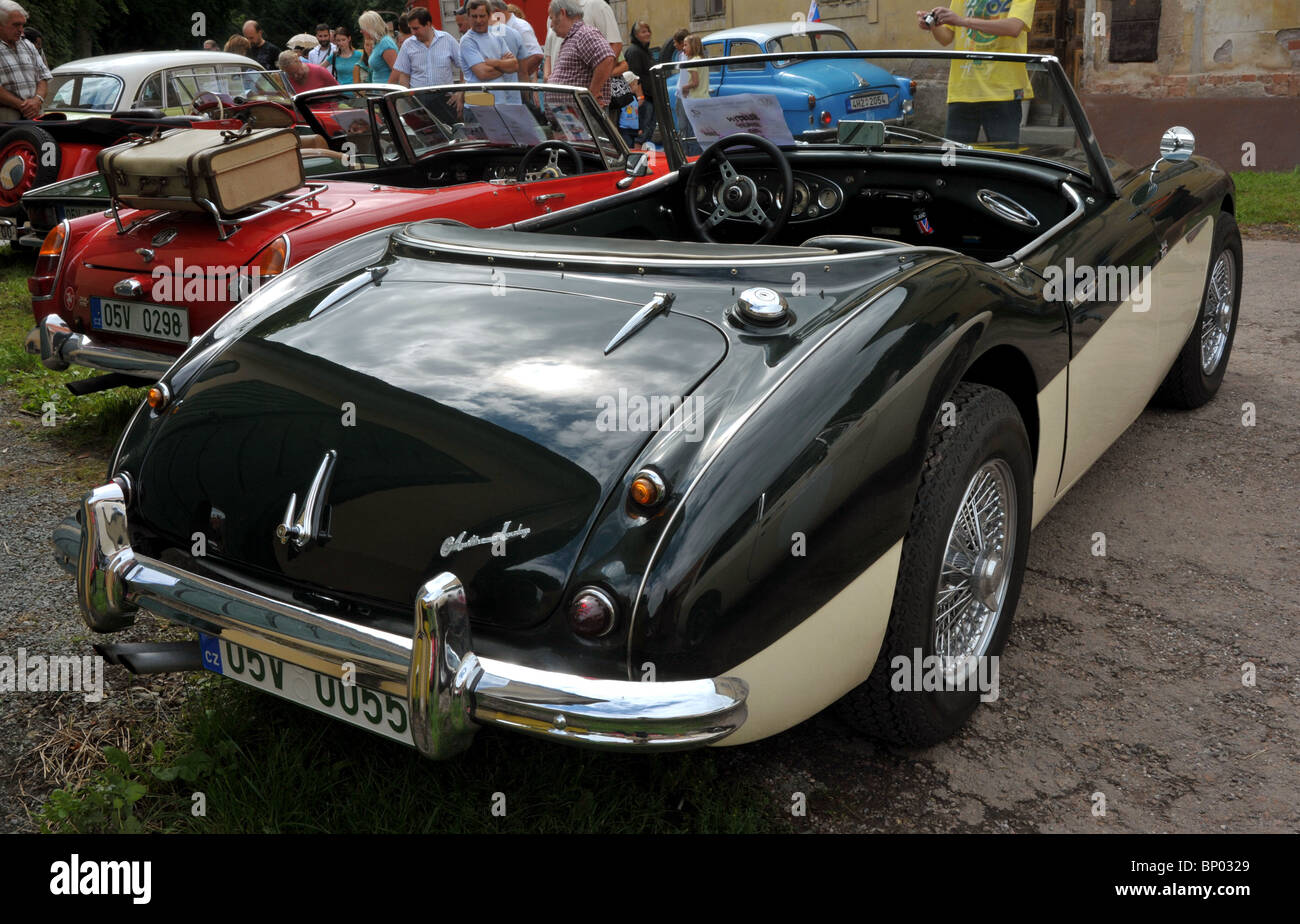 Vintage car Austin Healey in back view - Stock Image