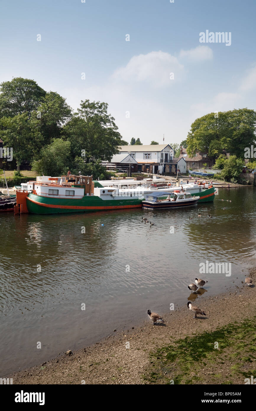Twickenham Boat Club and moored boats, Eel Pie Island, seen from the river bank, River Thames, Twickenham, Richmond, - Stock Image