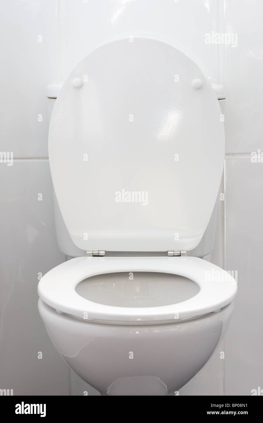 Toilet Seat Up Or Down.Toilet Bowl With Lid Up And Seat Down Stock Photo 30739661