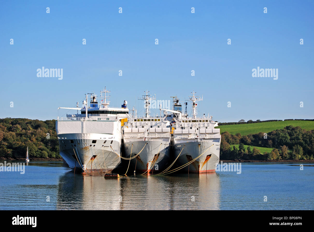 cargo ships ' laid up ' in deep water on the river fal near truro in cornwall, uk - Stock Image