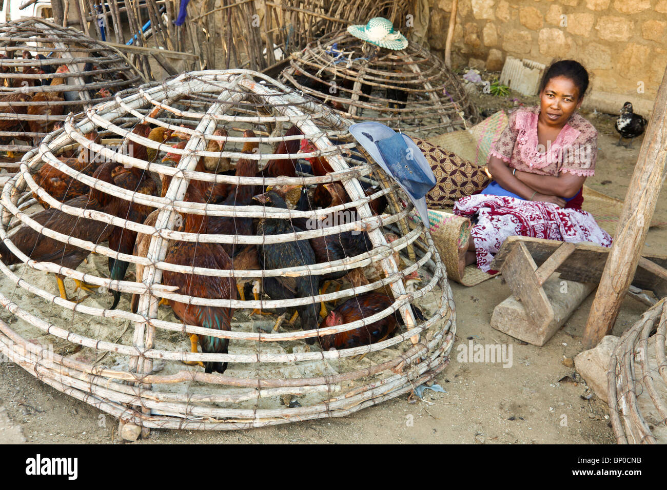 Woman selling hens from a basket at the market in Toliara aka Toliary fka Tulear, south east Madagascar - Stock Image