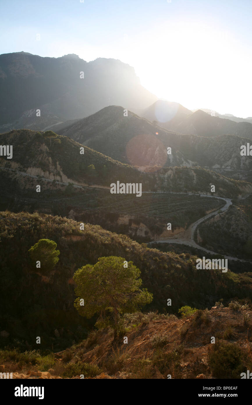 Spanish mountains near Murcia, Spain, tree in foreground, lens flare effect - shooting into the sun. - Stock Image
