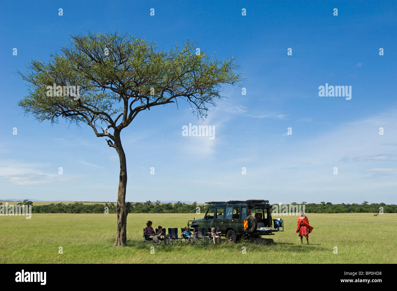 Kenya, Masai Mara. Breakfast under a balanites tree whilst out on a game drive from Topi House. - Stock Image