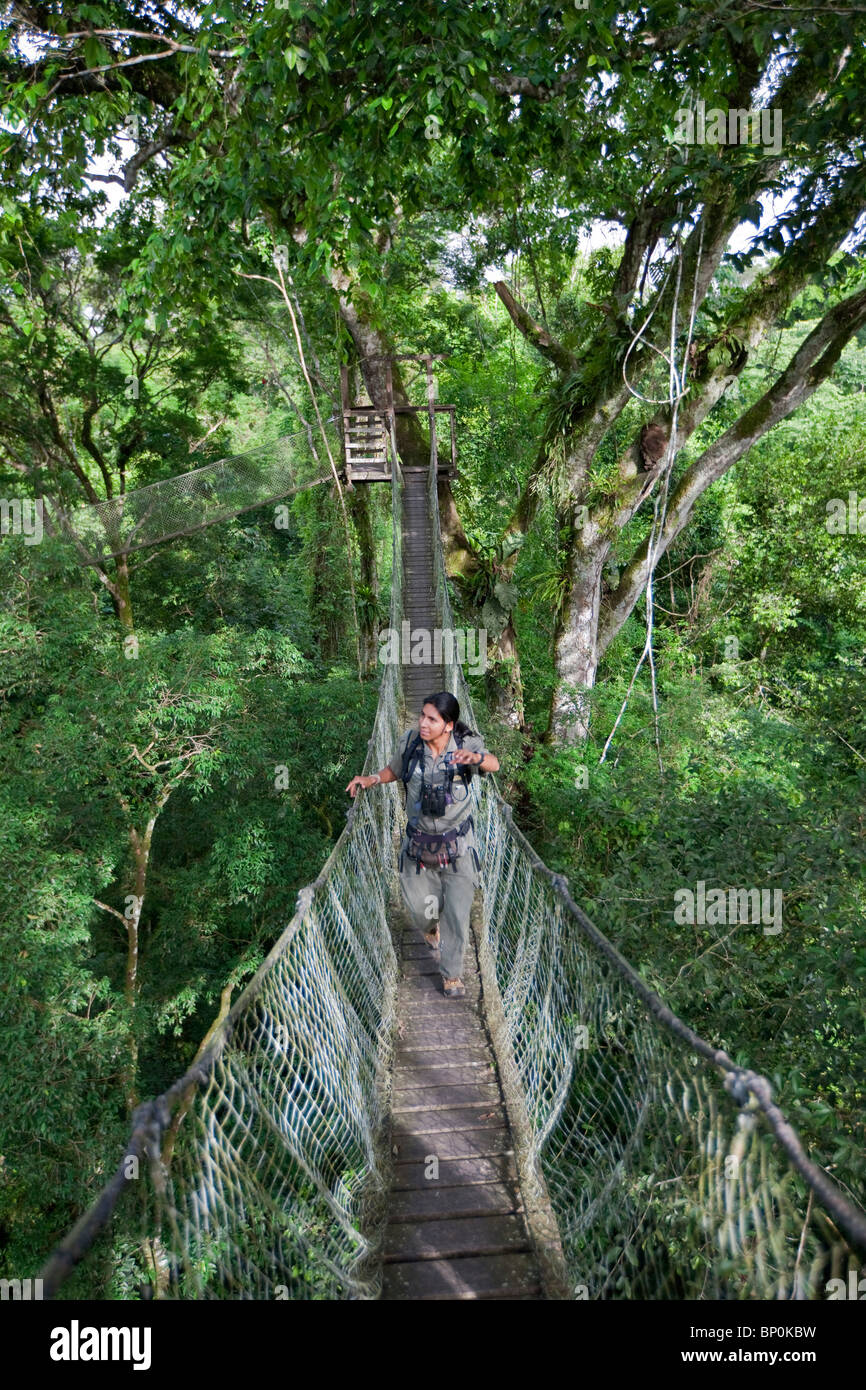 Peru. Jesus, an experienced local guide at Inkaterra Rerserve Amazonica, crossing a bridge on the treetop-canopy Stock Photo