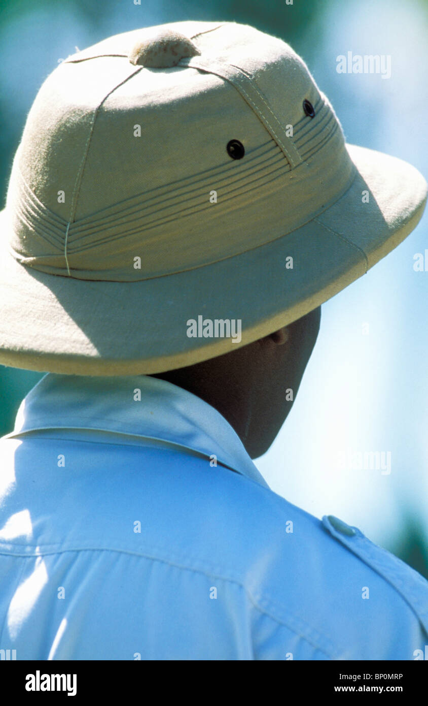 88b0f24d6ff31 Pith Stock Photos   Pith Stock Images - Alamy