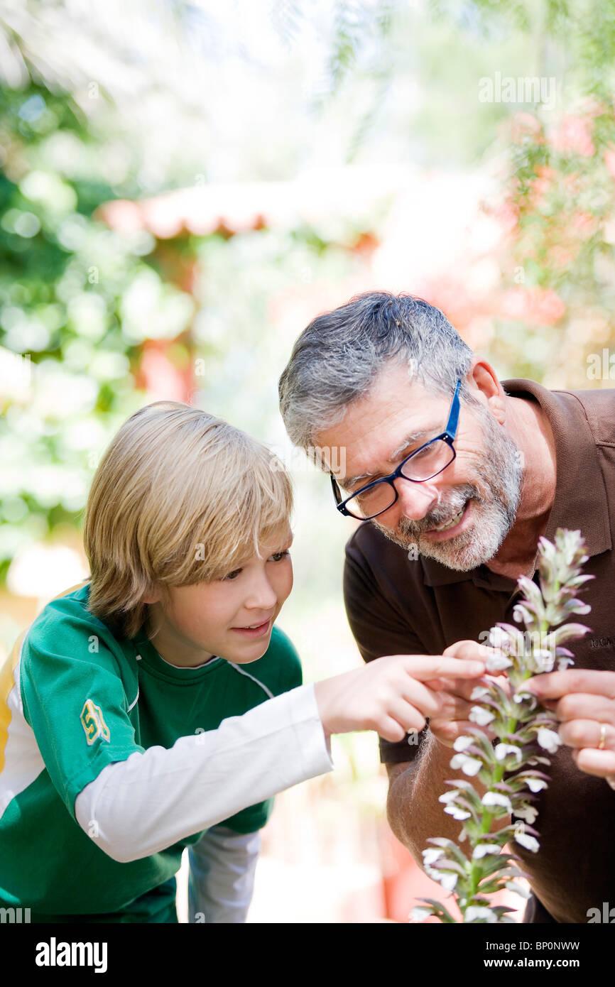 Man and child gardening - Stock Image