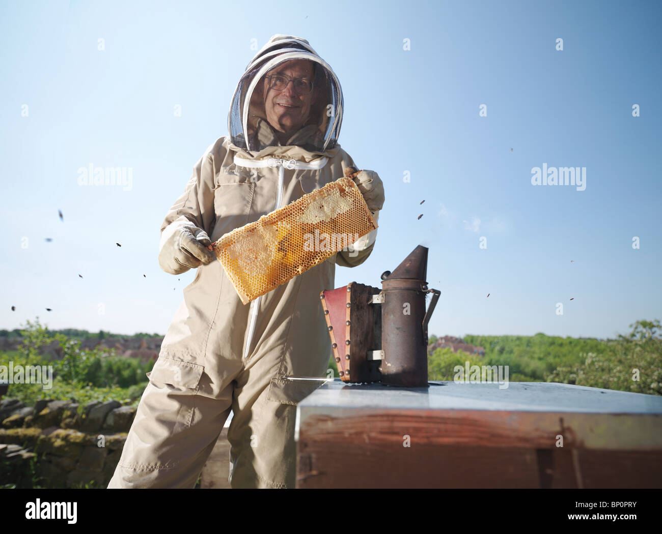 Beekeeper with honey comb and smoker - Stock Image