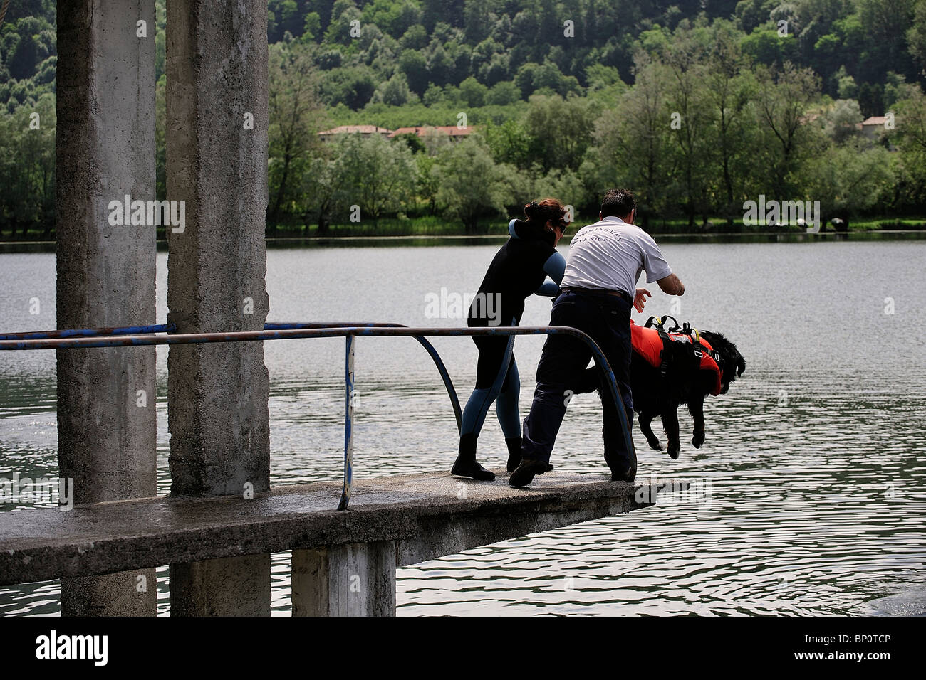 Italy, Veneto, near Vittorio Veneto, Search and Rescue Dog Training School - Stock Image