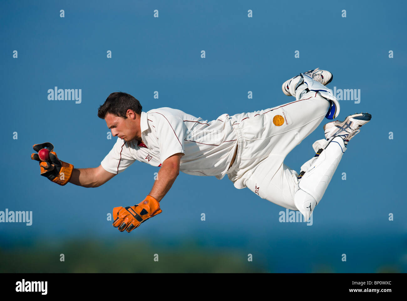 Wicket keeper in action diving to catch cricket ball. - Stock Image