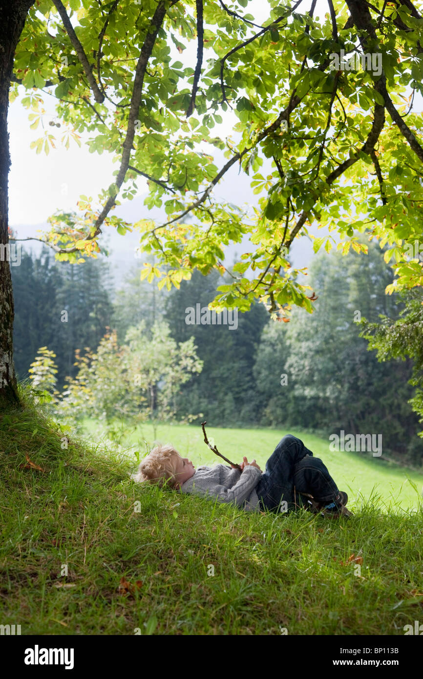 Boy playing with a limb under a tree - Stock Image