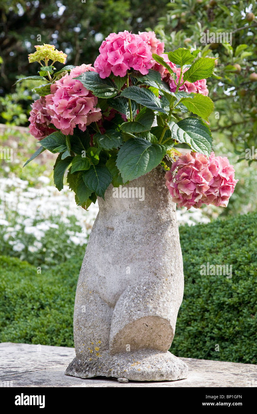 Hydrangeas flowers on display in a statue in the garden at Charleston - Stock Image