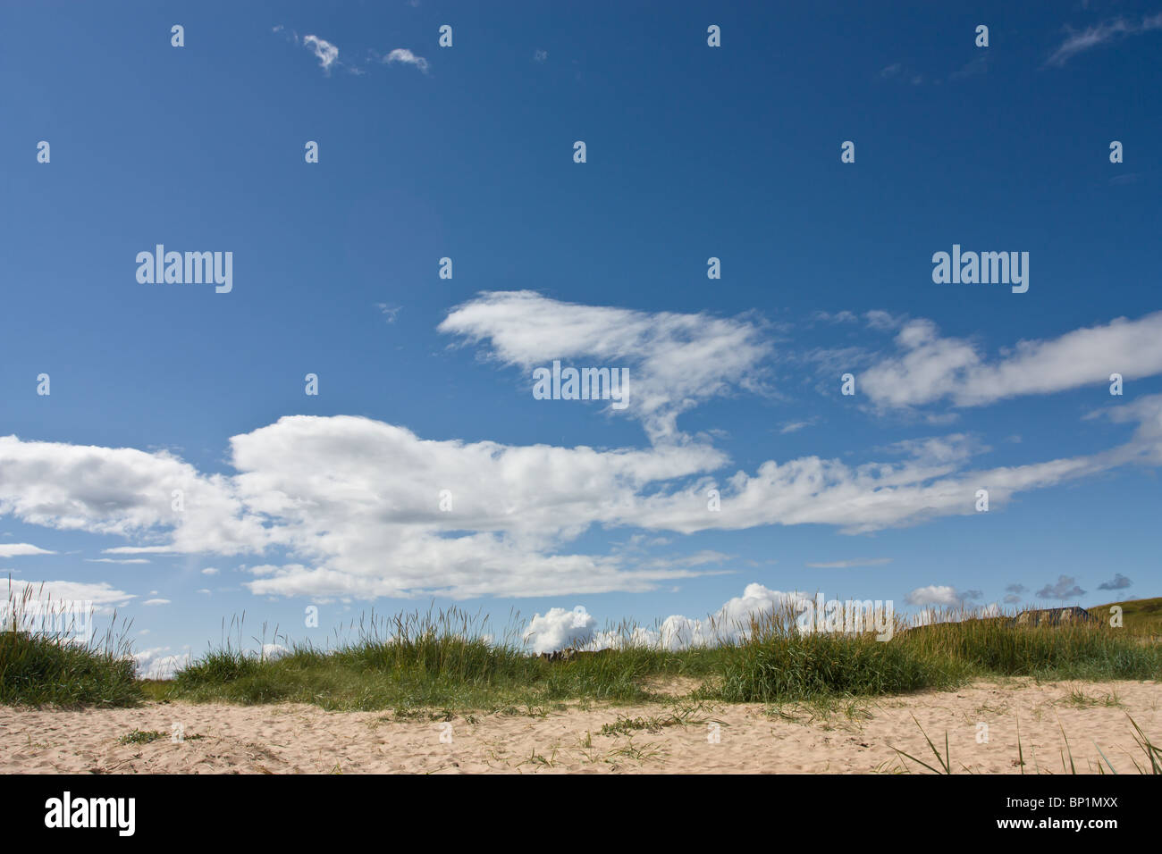 Sky background of vivid blue sky and white fluffy clouds. - Stock Image