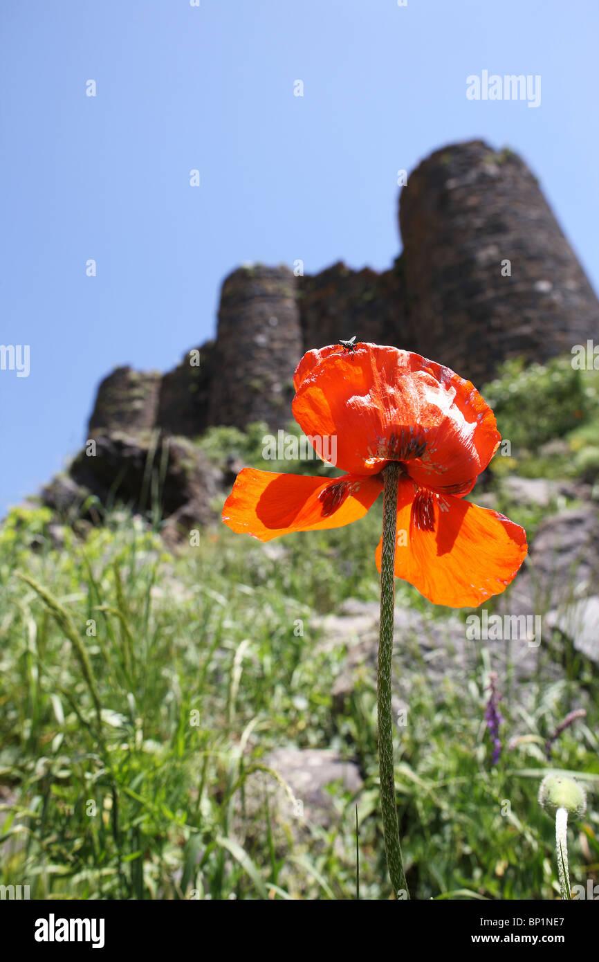 Armenia, 20100628, Monastery Amberd, Armenia; © Gerhard Leber - Stock Image
