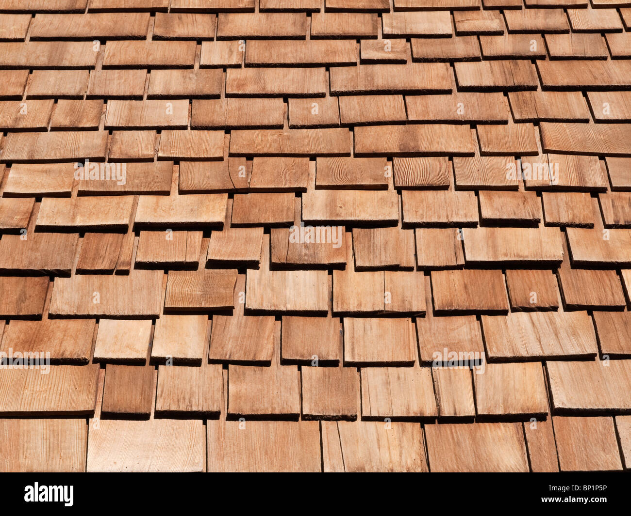 New red cedar shake roof on a high Sierra mountain cabin. - Stock Image