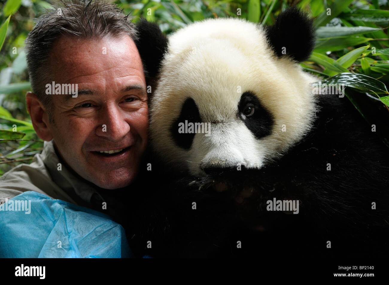 Wildlife presenter Nigel Marven poses with a one-year-old female panda called Yali at Chengdu Panda Base in Sichuan, - Stock Image