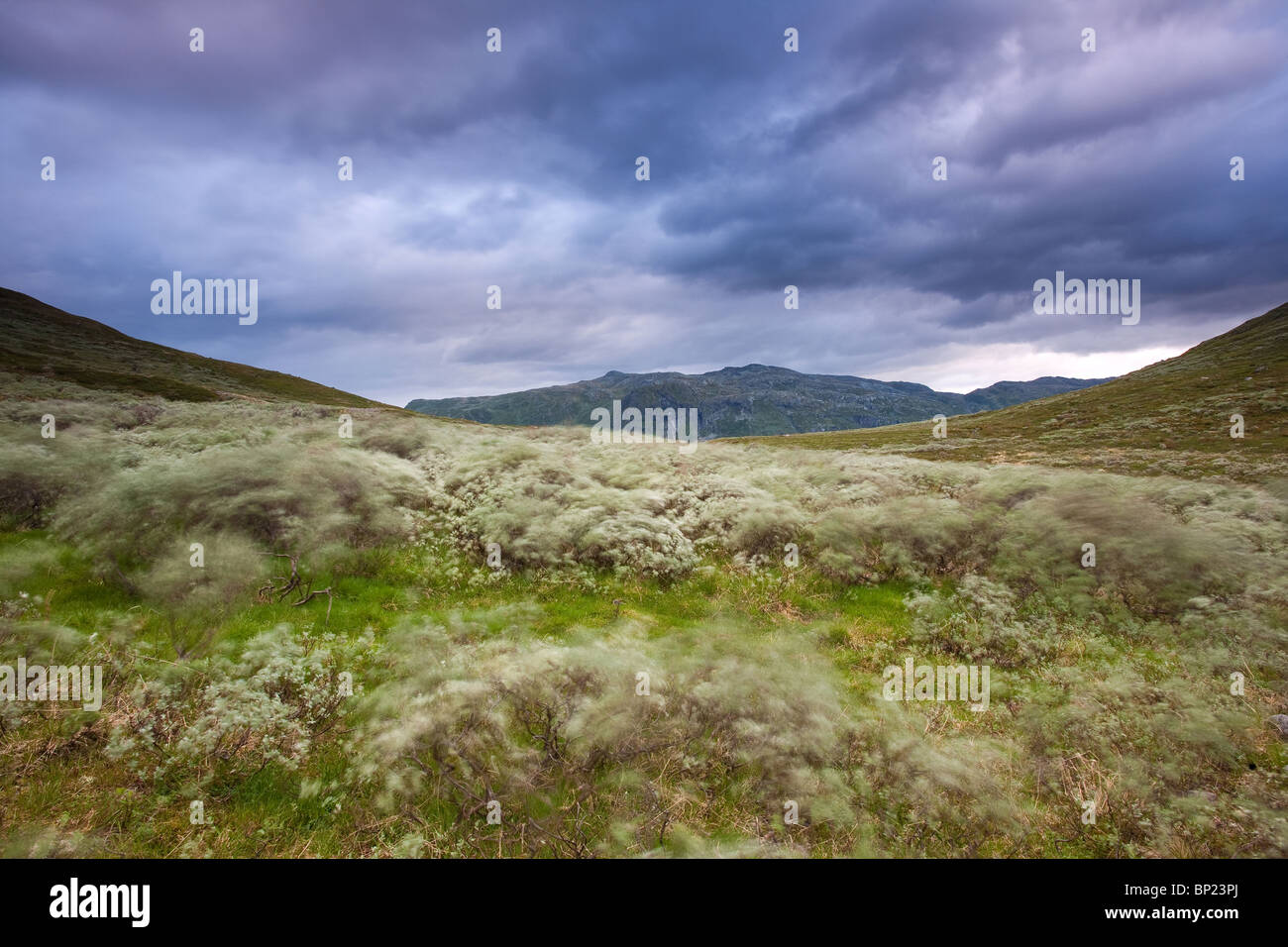 Dramatic clouds and windy conditions in the Ringsdalen valley, Jotunheimen, Norway. - Stock Image