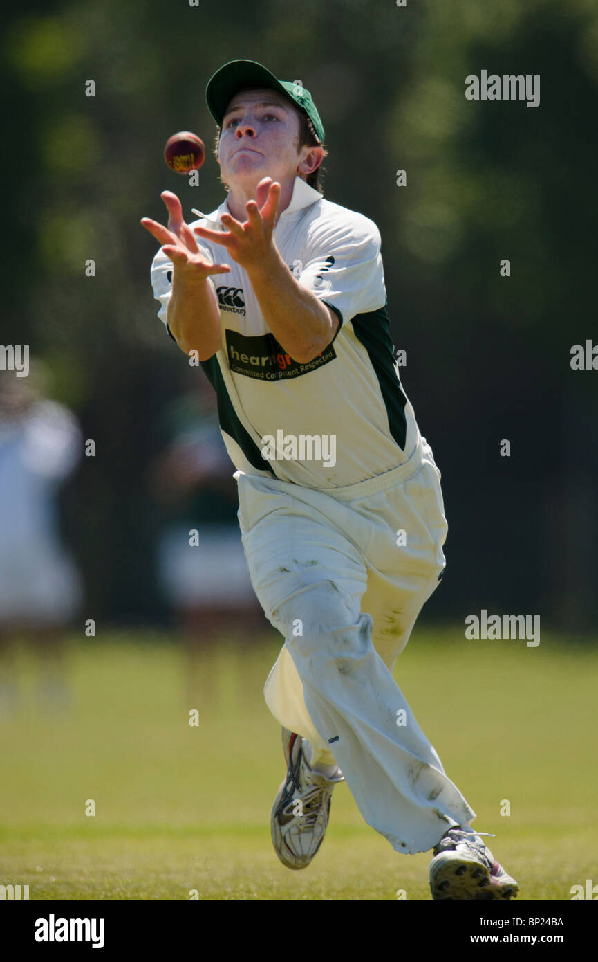 Sunday, 23rd May 2010. Dorset CCC versus Oxfordshire CCC. Dorset fielder makes catch. - Stock Image