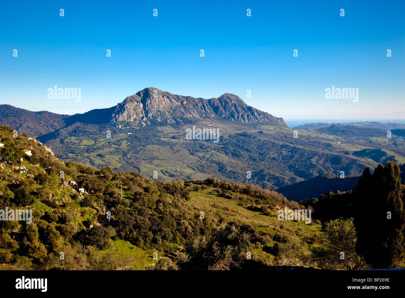 Serranía de Ronda, Andalucia, Malaga, Spain - Stock Image