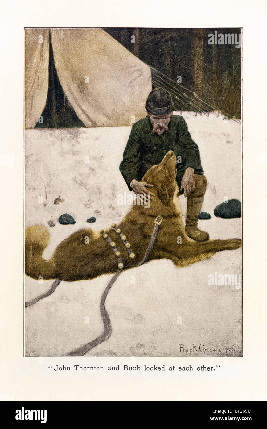 The Call Of The Wild With Original Version Illustrations