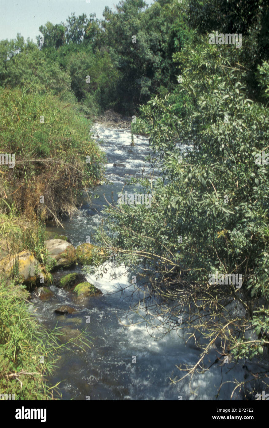 1694. THE DAN IN NORTHERN GALILEE, ONE OF THE TRIBUTARYS OF THE RIVER JORDAN - Stock Image