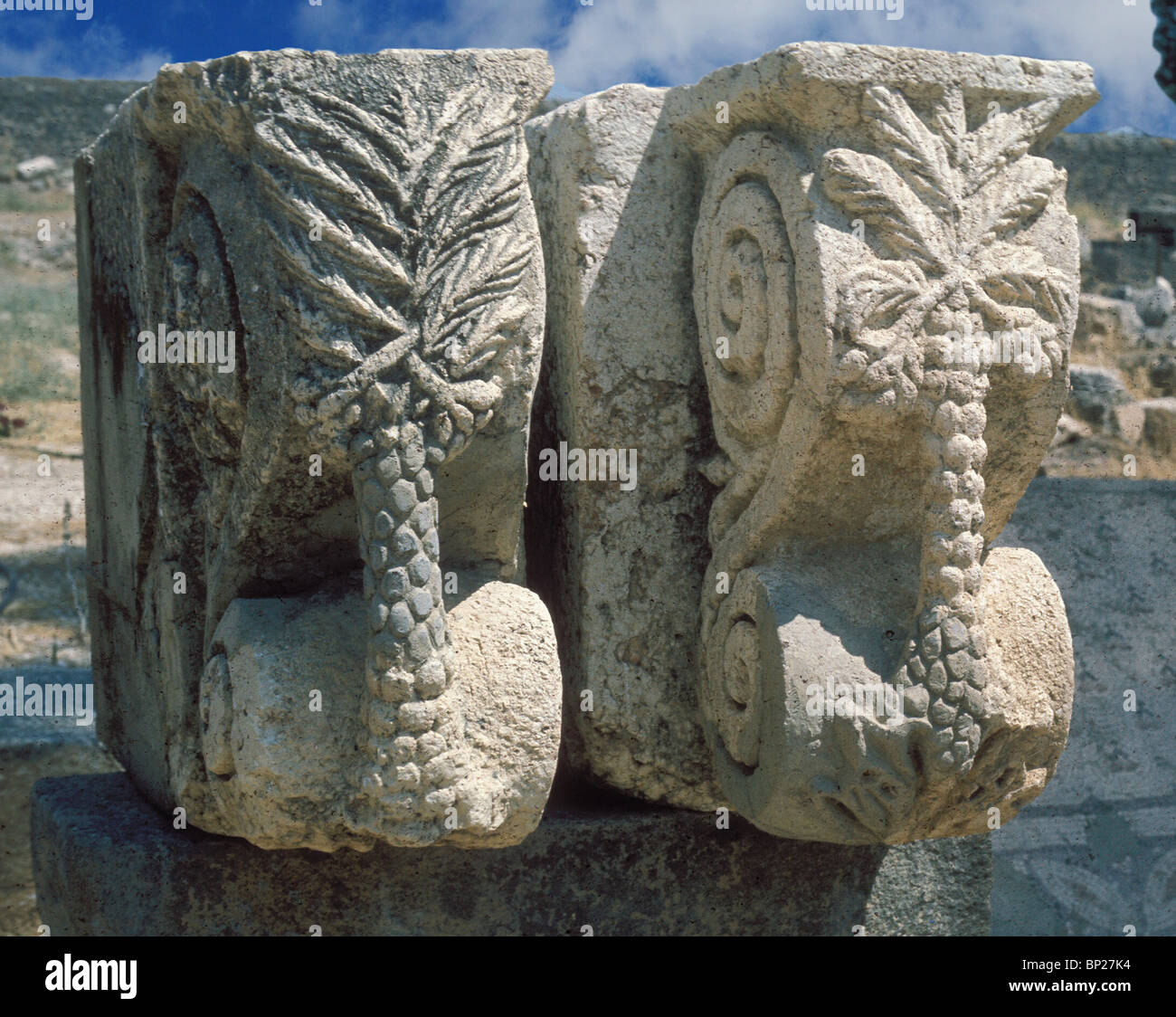 CAPERNAUM - ARCHITECTURAL DETAILS FROM THE 4TH. C. SYNAGOGUE. STONE CARVINGS DEPICTING FRUIT AND TREES OF THE LAND - Stock Image