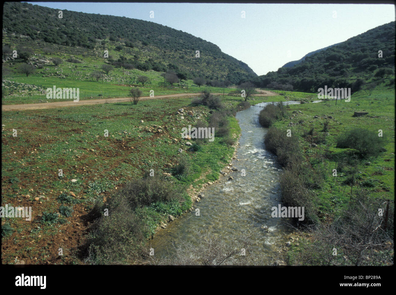 1960. UPPER GALILEE, THE DISHON RIVER - Stock Image