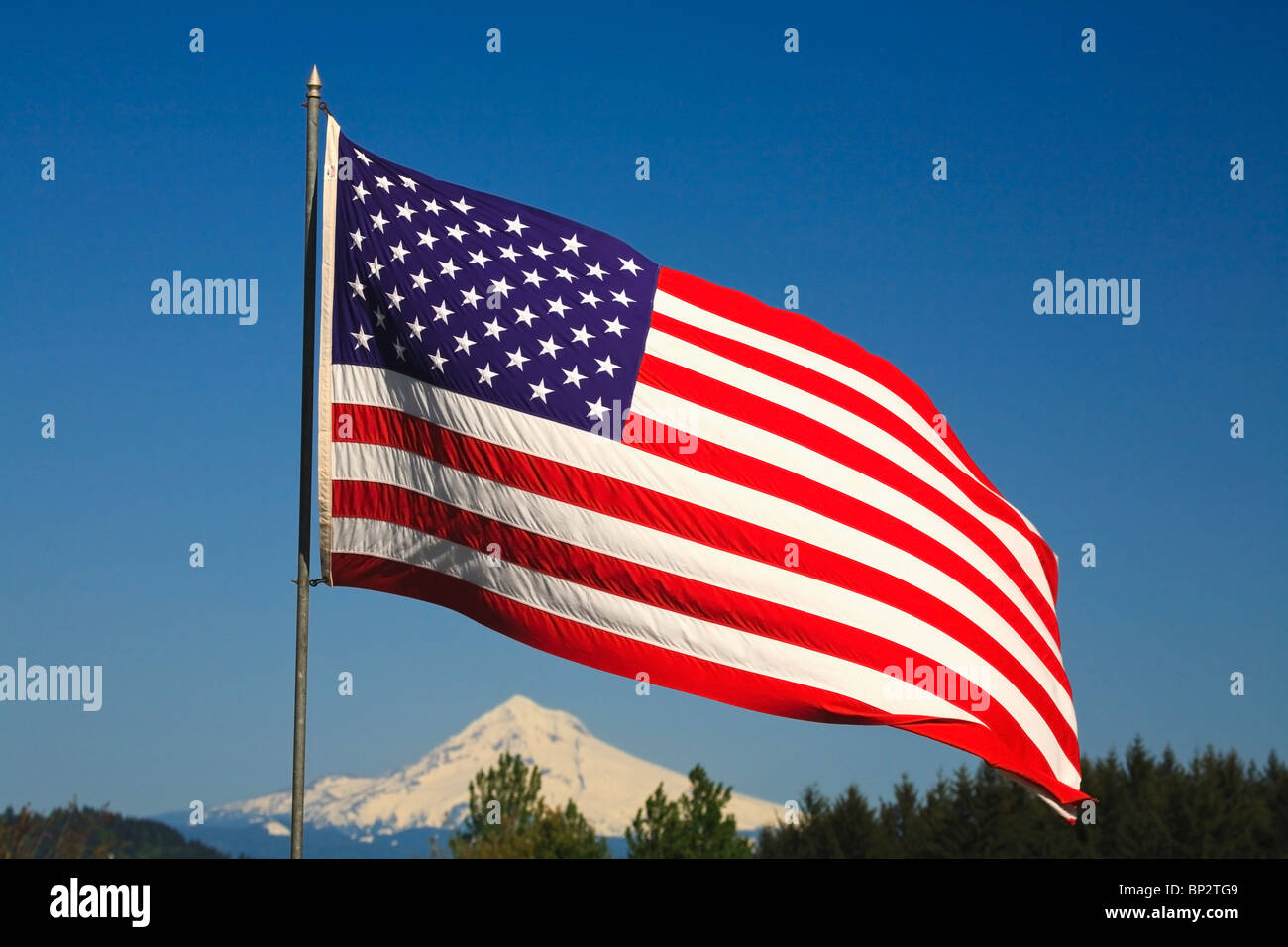 The American Flag - Stock Image