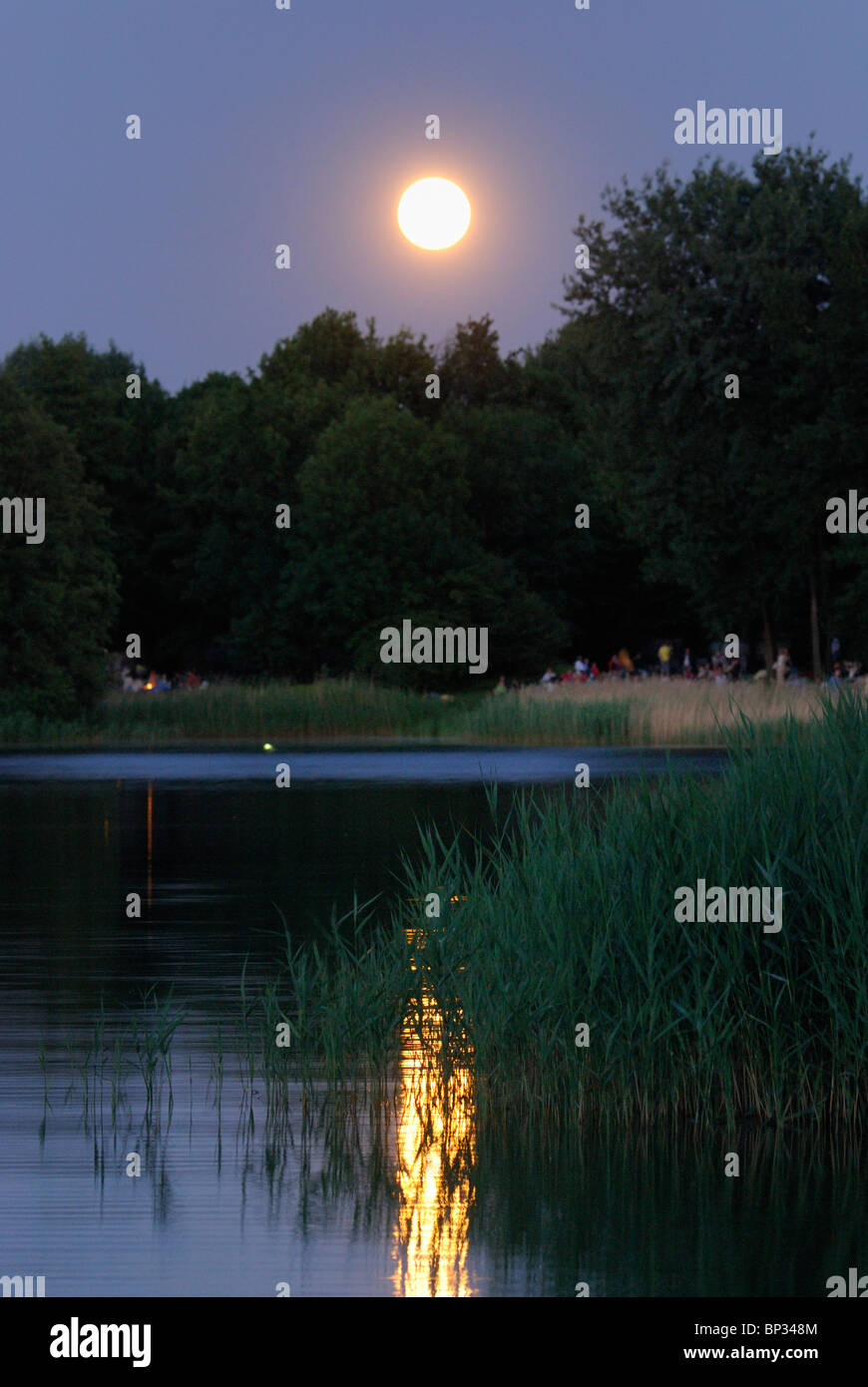 Midsummer night. Full moon over the lake, BUGA Park, Britzer Garten, Bundesgartenschau Park, Britz, Neukoelln, Berlin, - Stock Image
