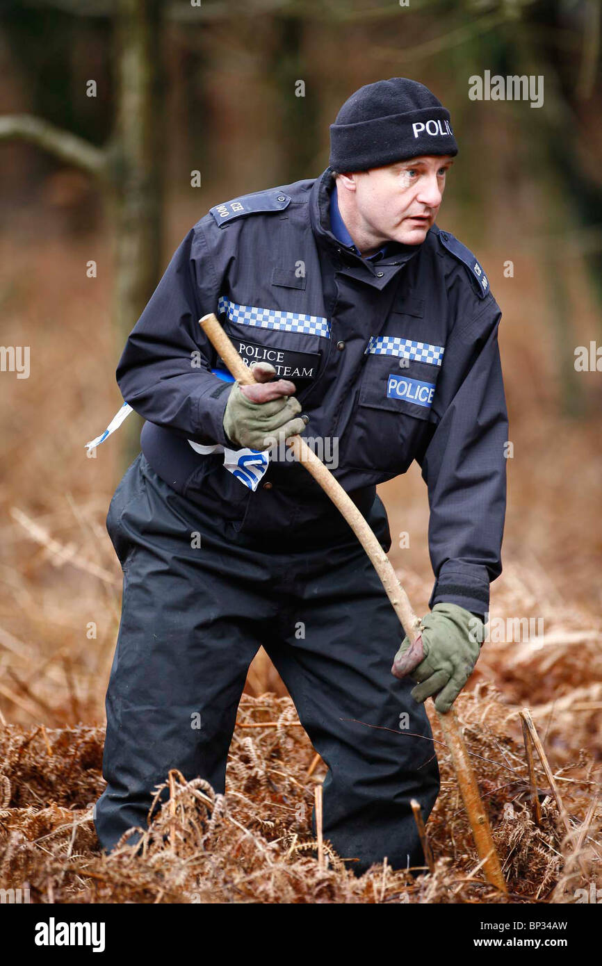 A Specialist Police unit search undergrowth on Ashdown Forest. Picture by James Boardman. - Stock Image