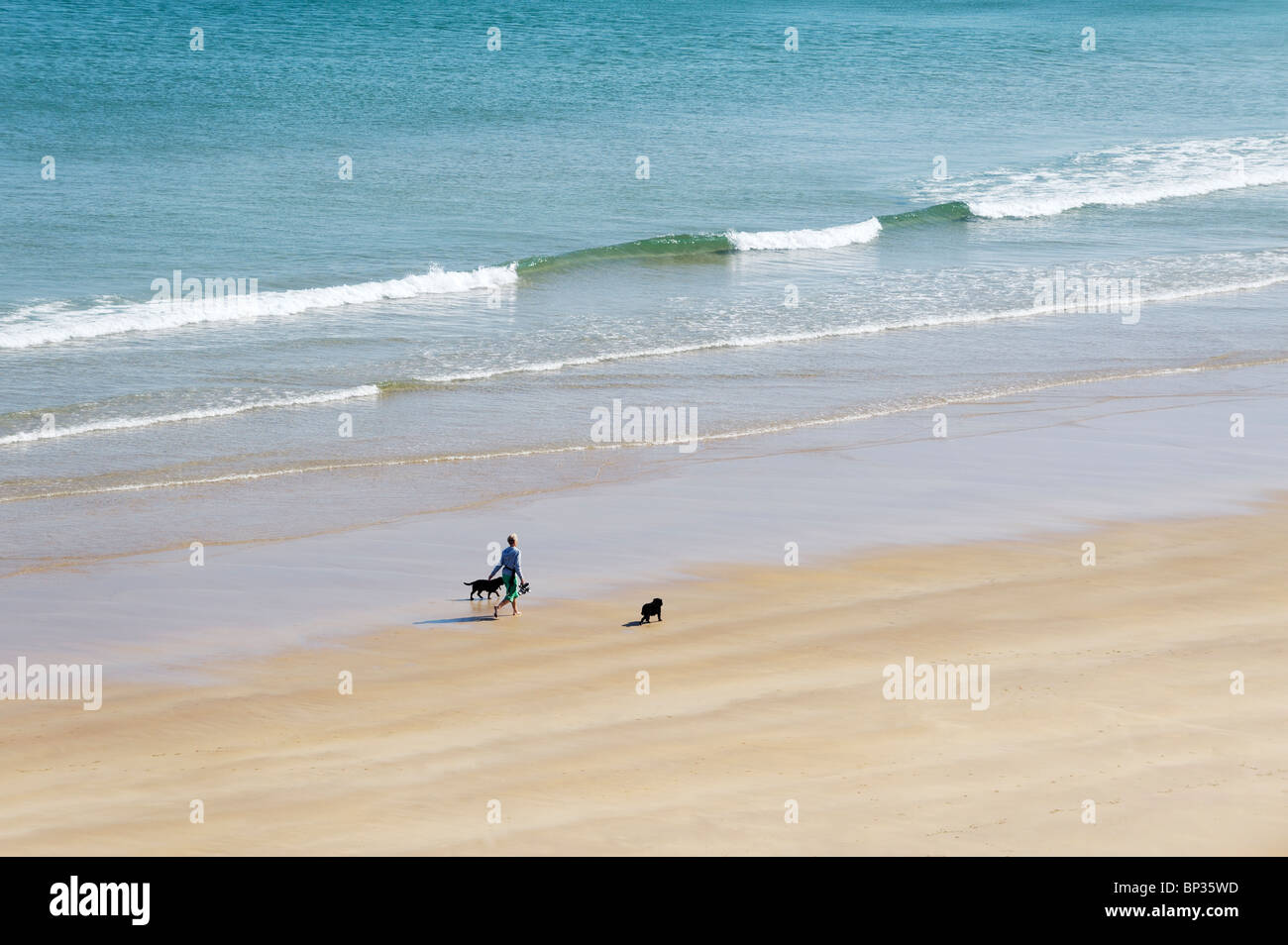 Woman walking dogs alone on deserted beach shore at the White Rocks between Portrush and Bushmills, Northern Ireland - Stock Image