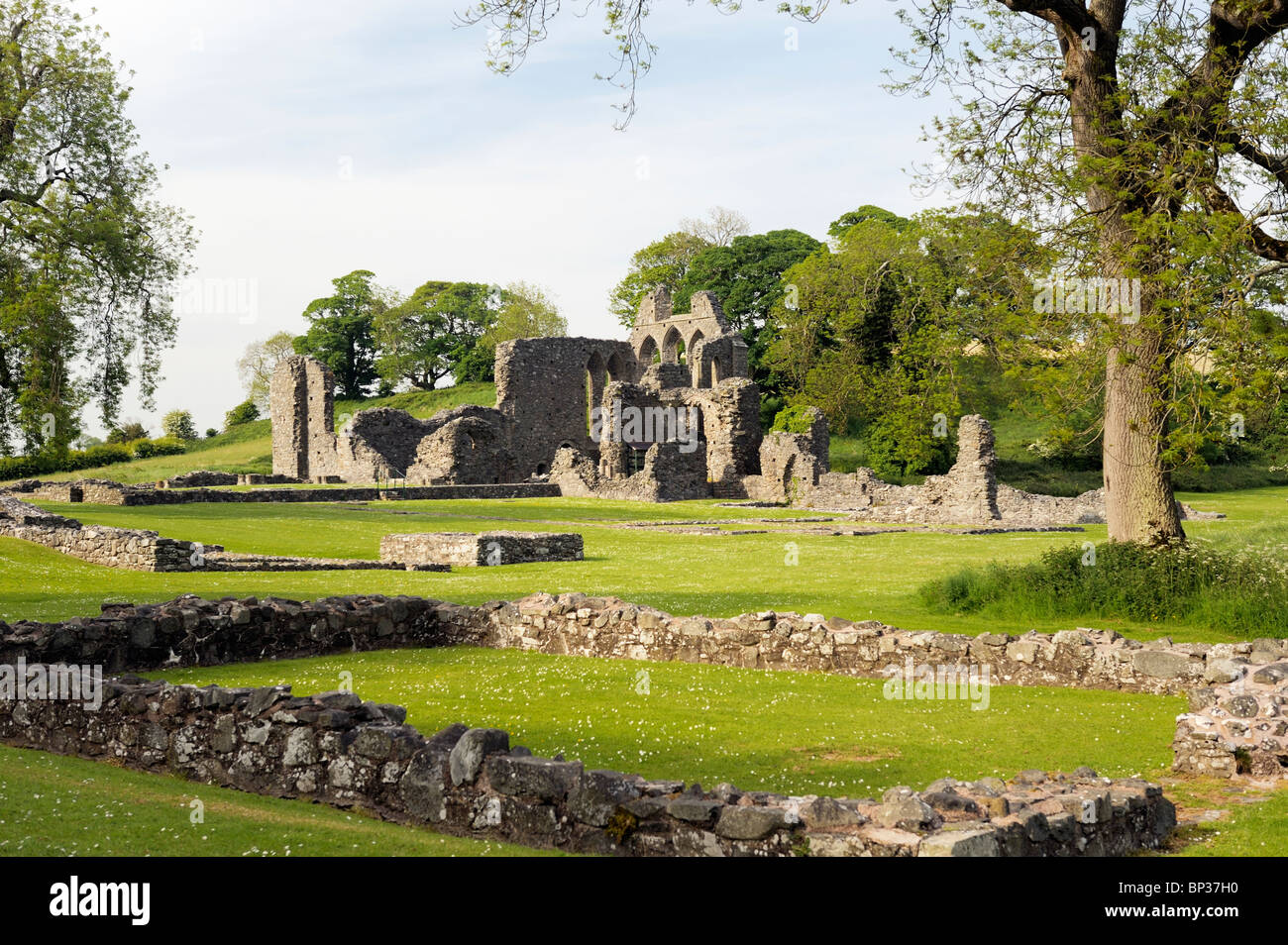 Inch Abbey near Downpatrick, County Down, Northern Ireland. Norman Cistercian abbey founded 1180 by John de Courcy - Stock Image