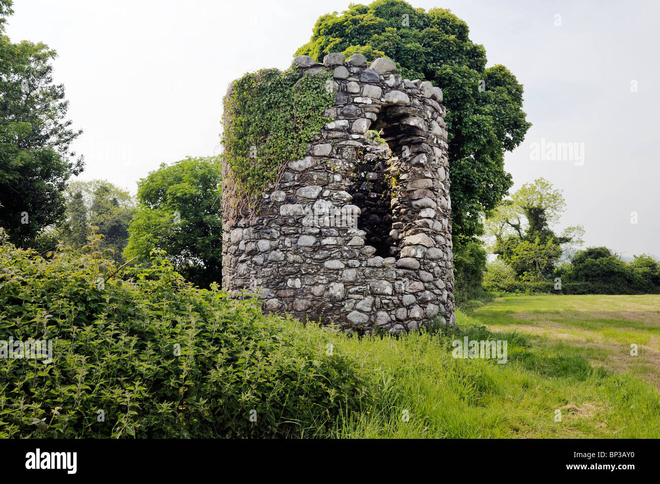 Ruined mediaeval Celtic Christian round tower at Maghera Old Church of St. Donairt. Castlewellan, County Down, Northern - Stock Image