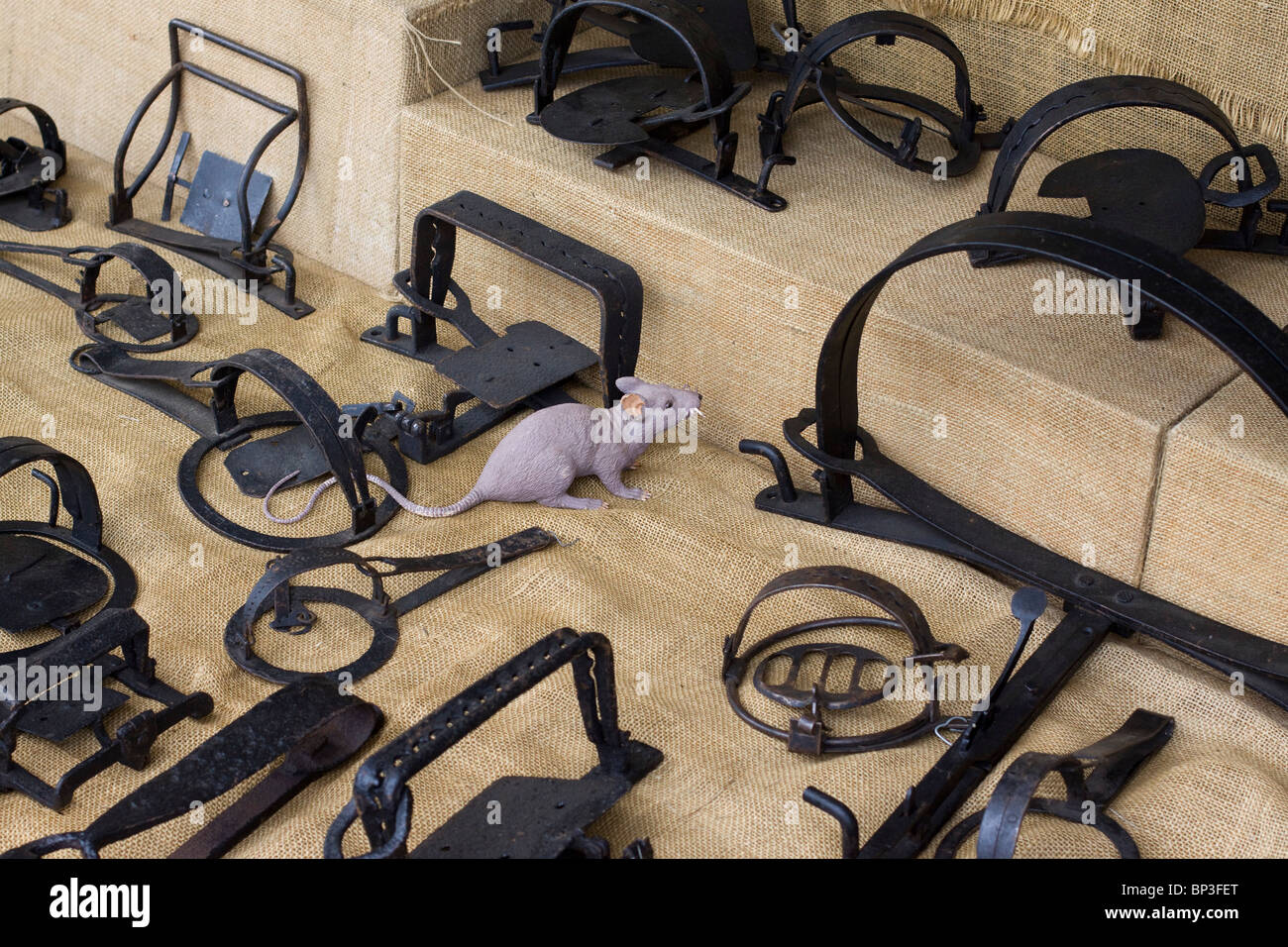 A Display of Animal Traps at a show in Cirencester - Stock Image