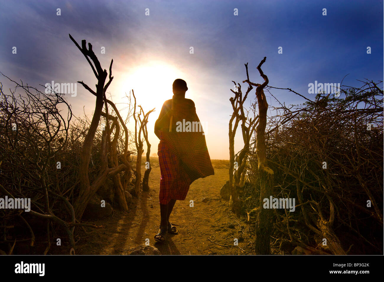 Masai villager, Masai Mara National Park, Kenya - Stock Image