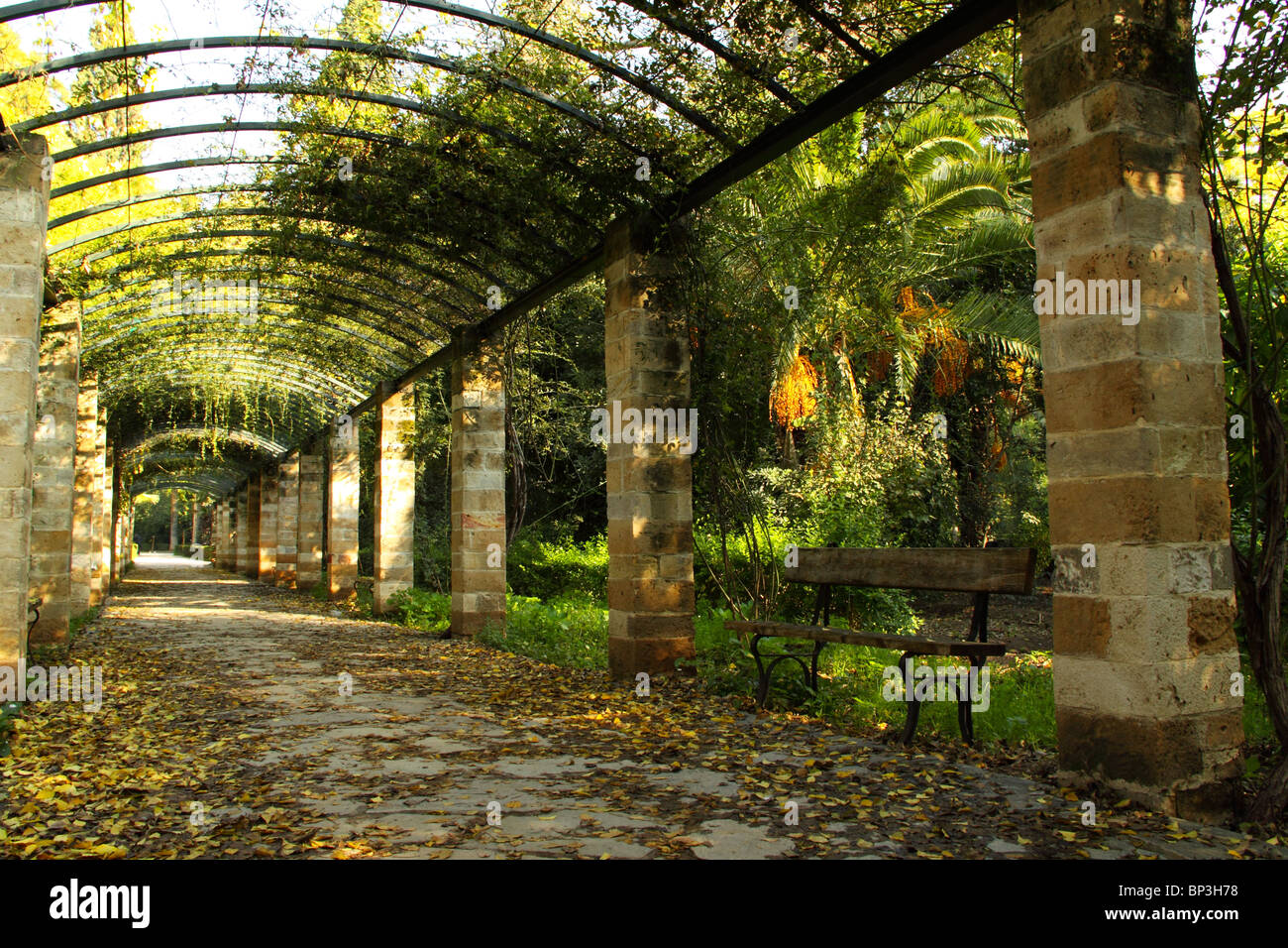 National Gardens Of Athens Stock Photos & National Gardens Of Athens ...