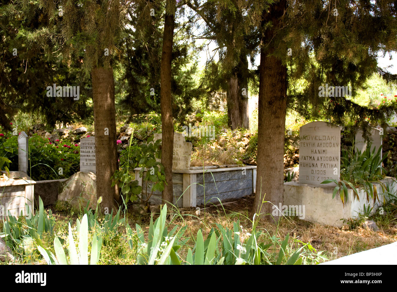 Tombstones surrounded by trees and plants, Alanya, Turkey. - Stock Image