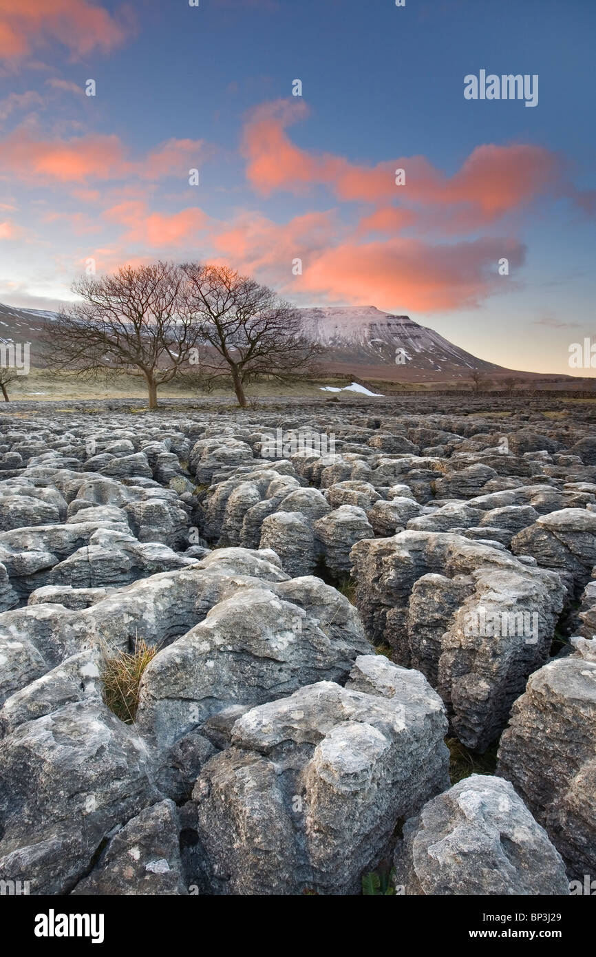 Limestone pavement at the foot of snow capped Ingleborough Hill at Southerscales one of Three Peaks Ingleton Yorkshire - Stock Image