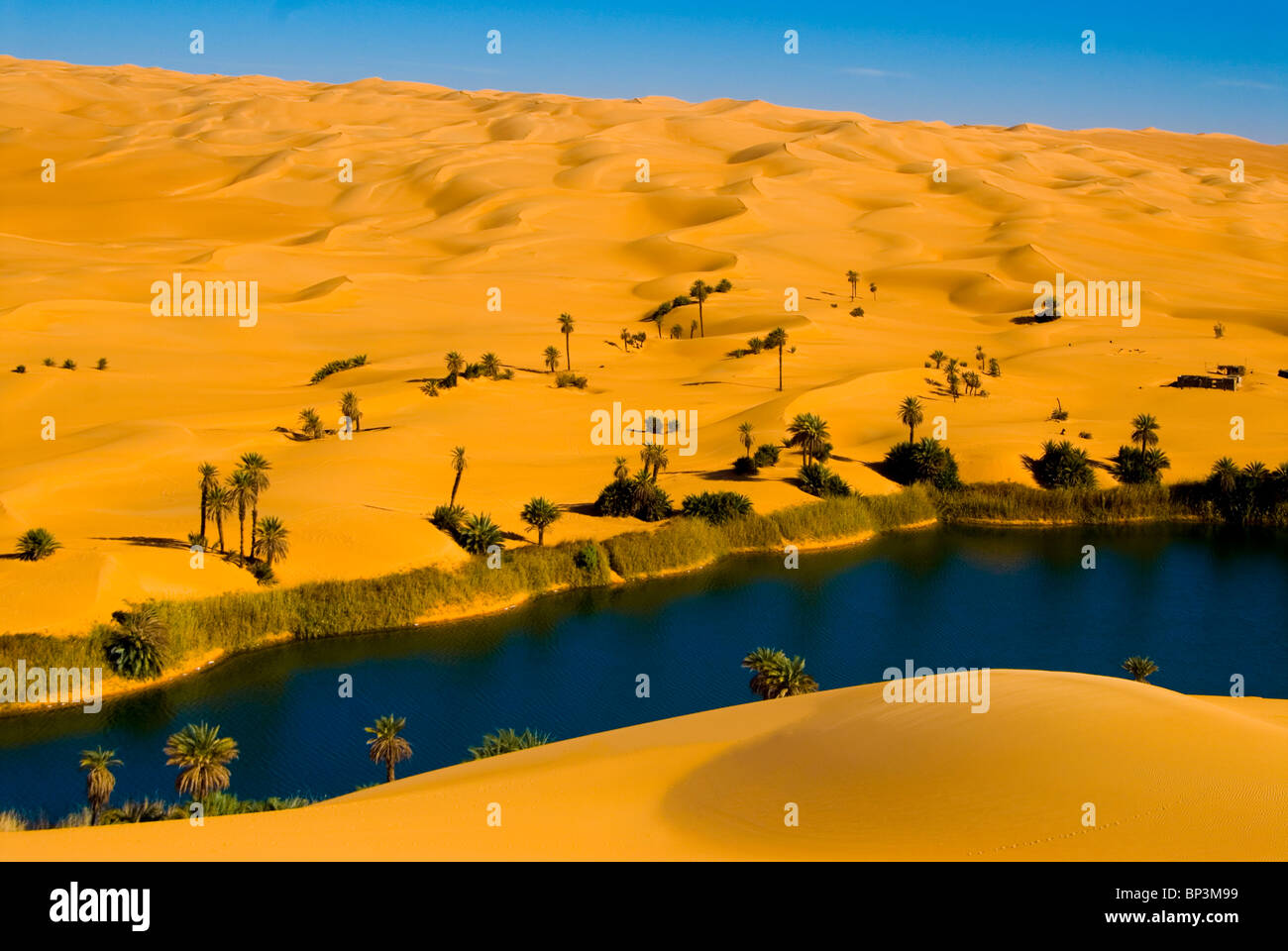 ubari libya