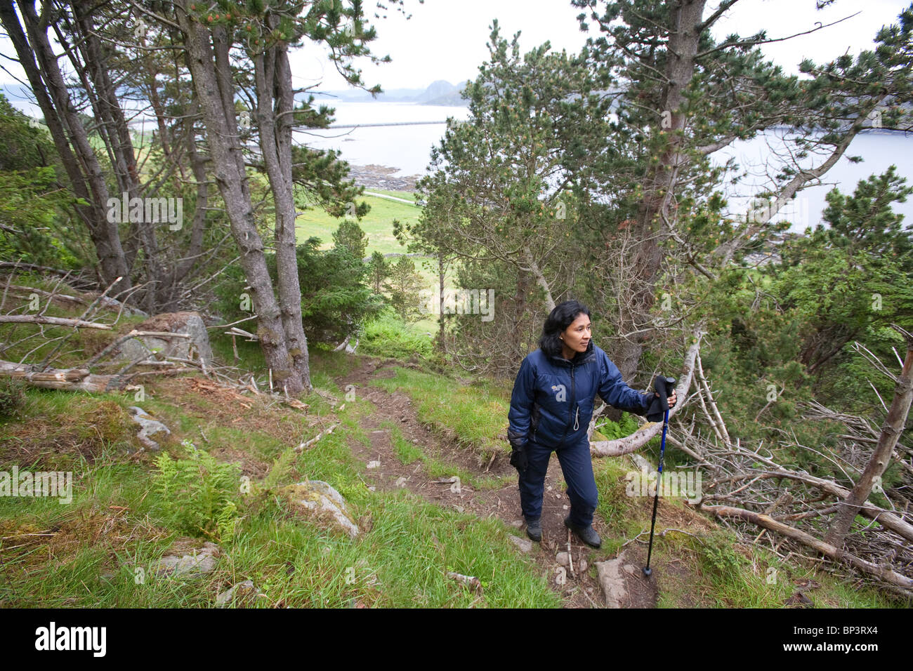 Hiker on one of the trails on the island Runde on the west coast of Norway. - Stock Image