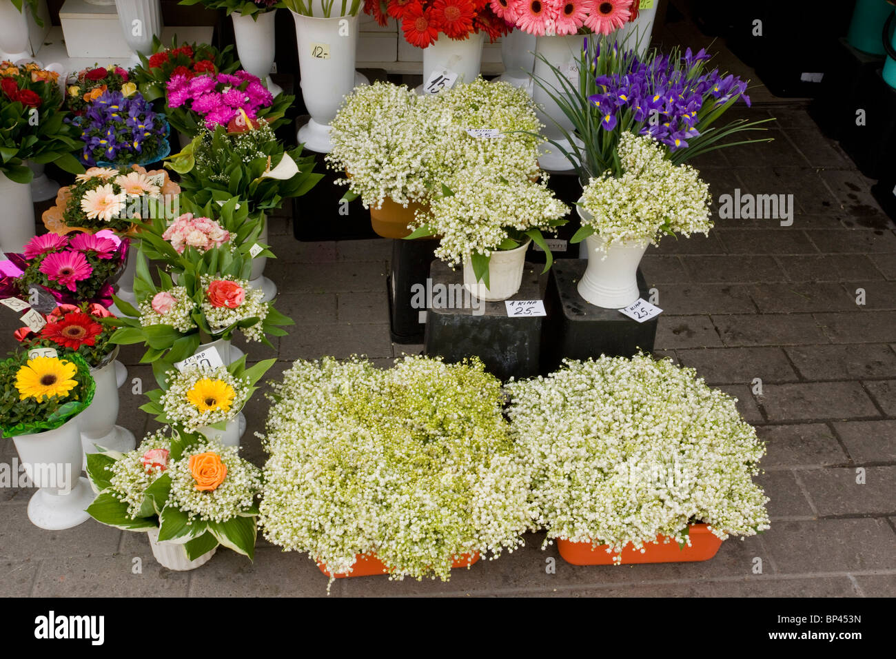 Lily place stock photos lily place stock images alamy flowers for sale in tallinn market including wild collected lily of the izmirmasajfo