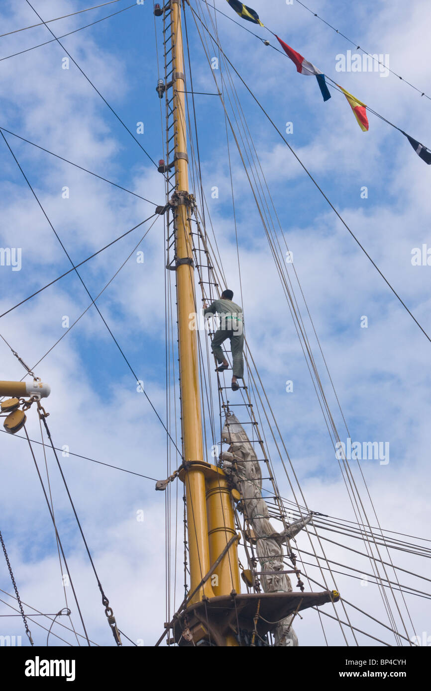 crewman climbing the rigging of the barquentine sailing ship The Dewaruci  belonging to the Indonesian Navy. - Stock Image
