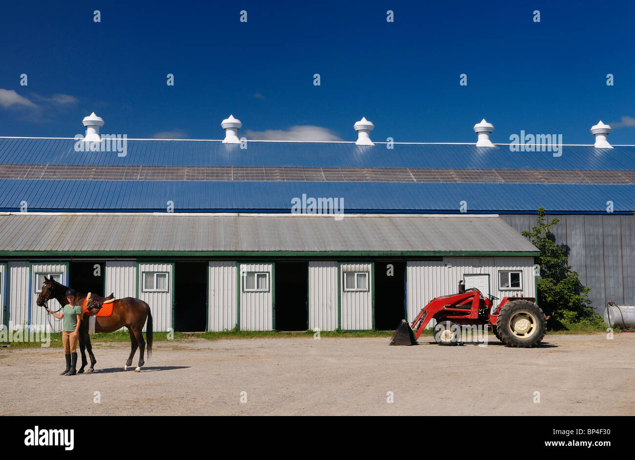 Rider holding her horse at riding stable barn and riding ring arena with tractor in summer Ontario Canada - Stock Image